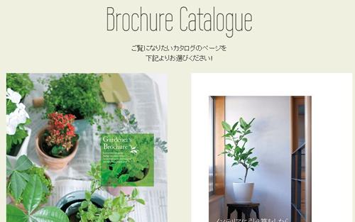 brochure500